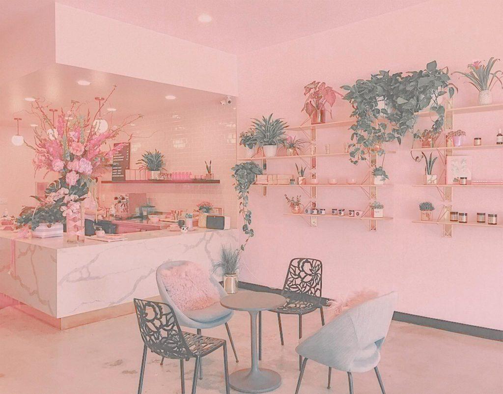 Pink Tone Lightroom Preset