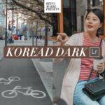 Korean Dark Preset Lightroom