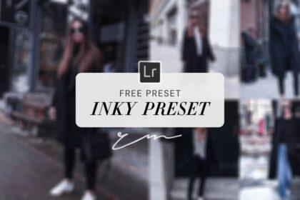 Free Inky Preset Lightroom ReinaMarie presets