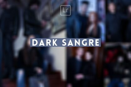 Free Dark Sangre Lightroom Preset (1)