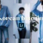 Free Korean Blue Tint Lightroom DNG Preset