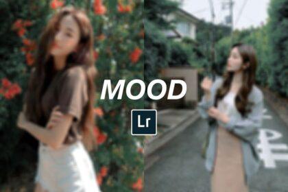 mood dark free lightroom preset