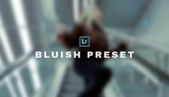 Bluish Free Lightroom Preset