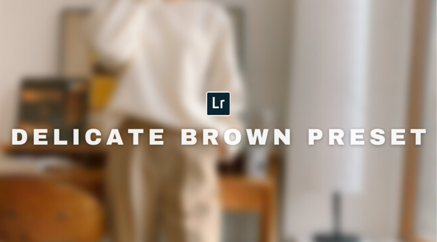 Free Lightroom DELICATE BROWN PRESET
